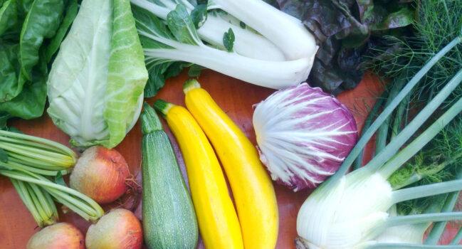 Meld je aan bij een CSA tuinderij, Herenboerderij of Voedselcoöperatie bij jou in de buurt.